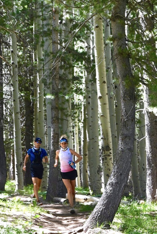 Nicole and Zach Bitter in the aspens photo by Peter Mortimer 750 NOTICIAS 50K